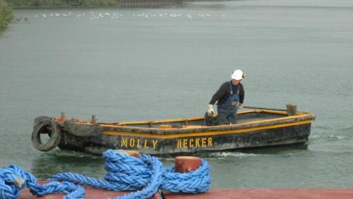 """Arbeitsboot """"MOLLY"""""""